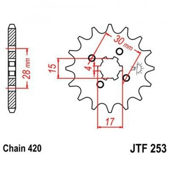 PIÑON JT 253 13T 420