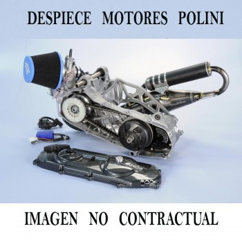 POLINI ENGINE EVOLUTION PRE 100 cc. DRUM BRAKE 050.0948