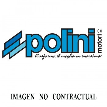 BULON PISTON POLINI D.10x33x6 271.0243